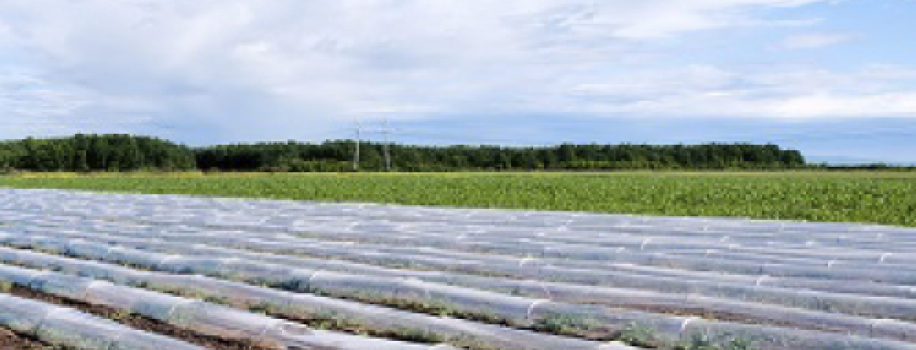 ¿Qué es el agribon y qué beneficios ofrece para los cultivos?